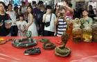 Fechamento do último restaurante de cobras em Taipé marca fim de uma era