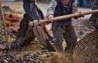 Campanha promove combate ao trabalho infantil