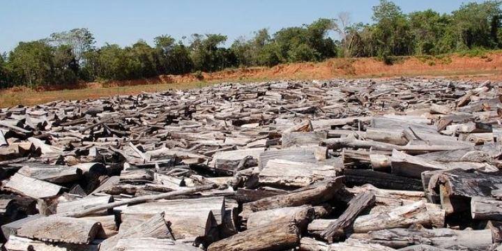 Usinas que destruíram rios rendem R$ 43 milhões a políticos e empresários de MT