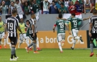 Com chuva de cartões e pênalti pelo VAR, Palmeiras vence o Botafogo