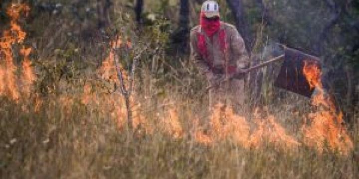 Período proibitivo para queimadas começa nesta segunda-feira e vai até 15 de setembro