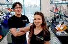 Cientista usa anticorpos pra matar corona